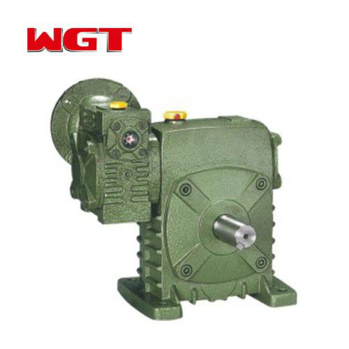 WPEDS40 ~ 250 Worm Gear Reducer
