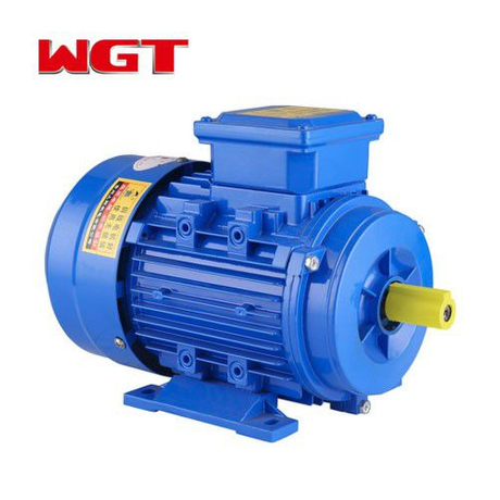 YE2 series copper wire wound three-phase 4hp motor