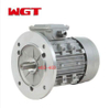 YE2 aluminum shell three-phase AC reducer motor 220V AC motor with brake 198